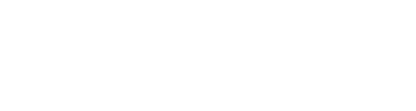 blueCommerce Online-Marketing