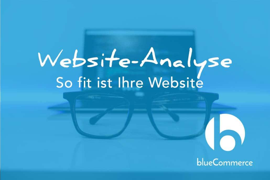 Website-Analyse - So fit ist Ihre Website - blueCommerce