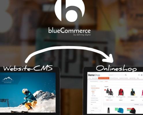Beratung Onlineshop und Websitetexte blueCommerce Internetagentur
